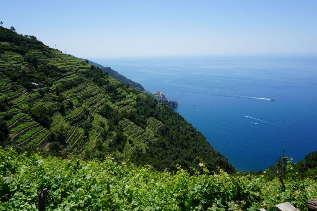 Hiking towards Manarola along the coast