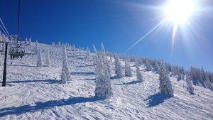Steamboat Ski Resort, fresh powder