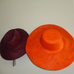 Andaz Papagayo Complimentary Hats