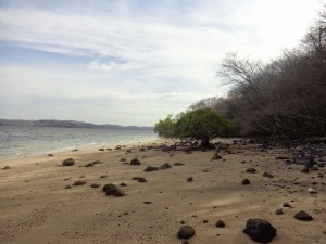 Andaz Papagayo Secluded Beach