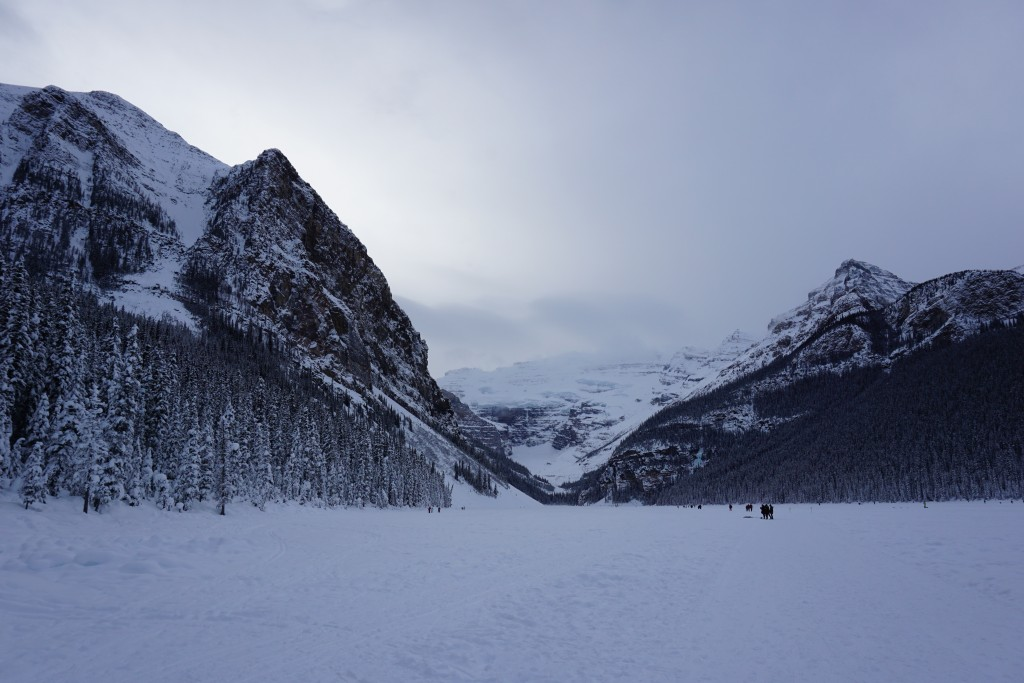 View of Lake Louise in the winter