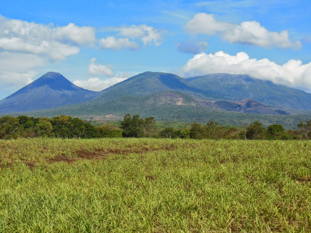 View of the Cerro Verda National Park, Santa Ana and Izalco Volcanoes
