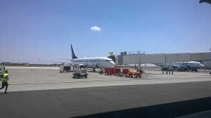 United Airlines Star Alliance Livery 737-800