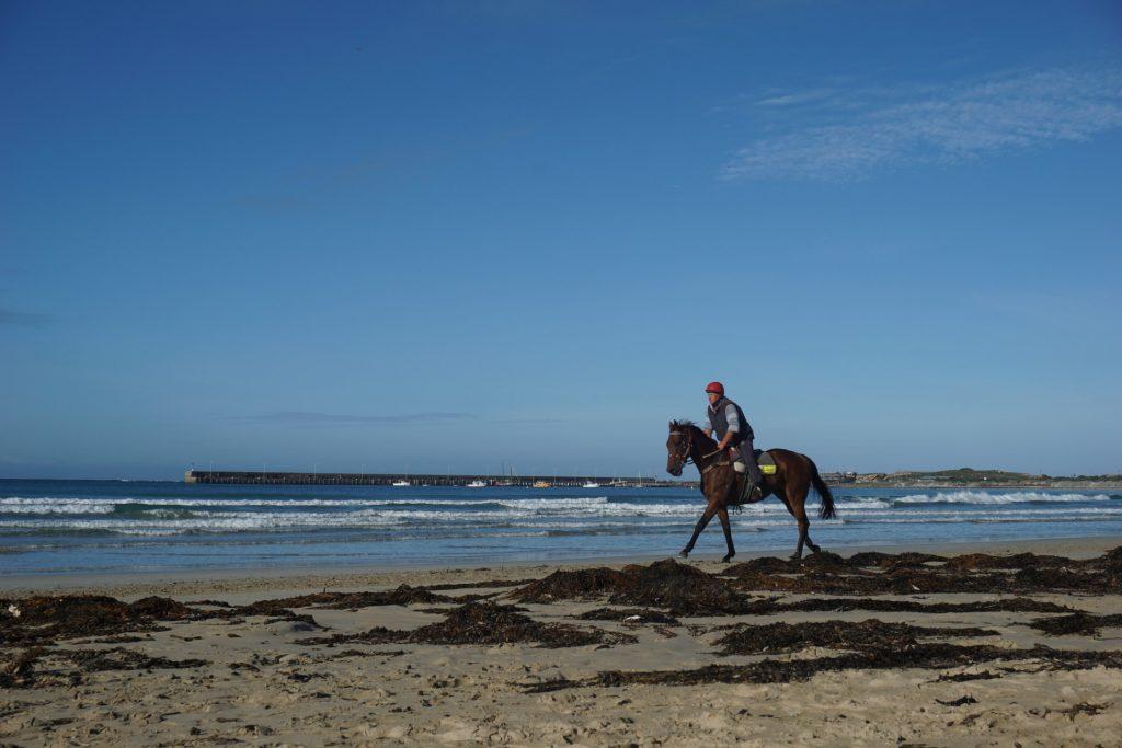 Horse riding at the beach near Warrnambol