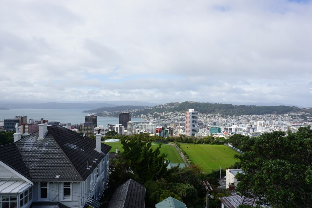View of Wellington on top of the botanic garden