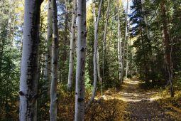 A Fall Weekend in Winter Park, Colorado
