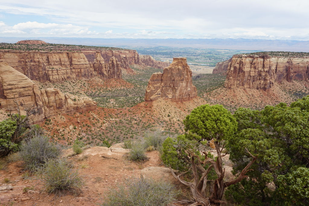 View of the Colorado National Monument