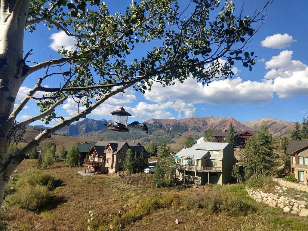 Our view from our Airbnb in Mt. Crested Butte