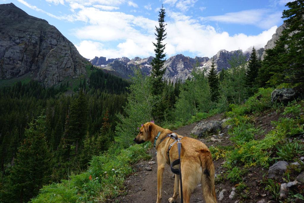 Hiking to Blue Lake near Ridgway, Colorado.